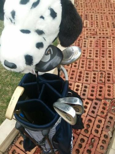 Women's bag golf clubs/putter/ 12 golf